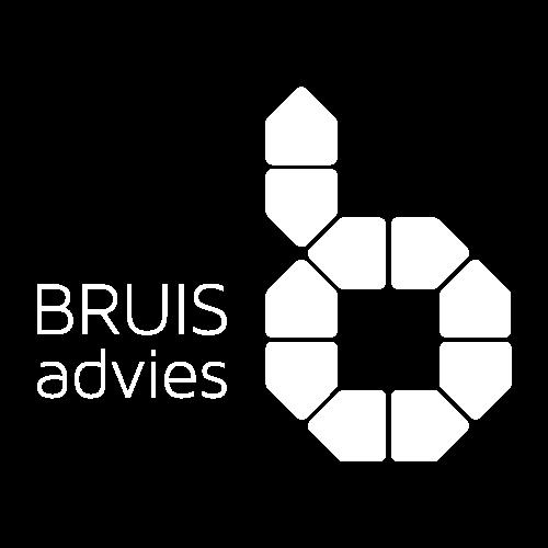 www.bruisadvies.nl Logo